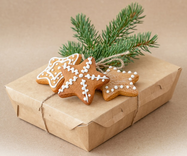 Box of christmas gingerbread with a branch of a christmas tree