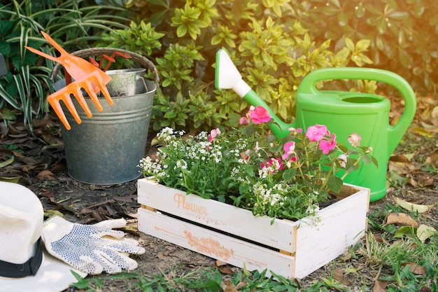 Коробка с цветами в зеленом саду