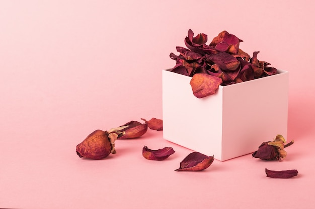 A box with dried rose petals on a pink surface. the herbarium of roses.