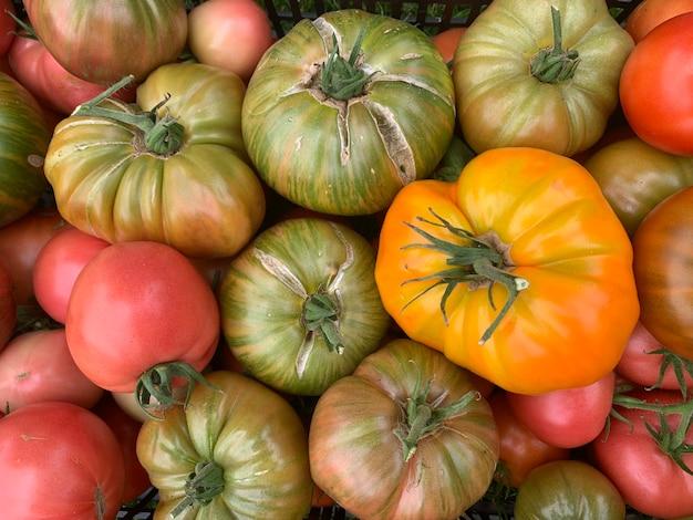 緑の草の上に熟した色のトマトの箱が立っています