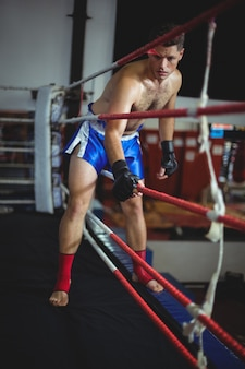 Boxer entering in boxing ring
