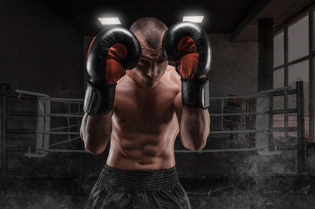 Boxer in the gym. he covers his head with gloves. protective rack. mixed martial arts. sports concept.
