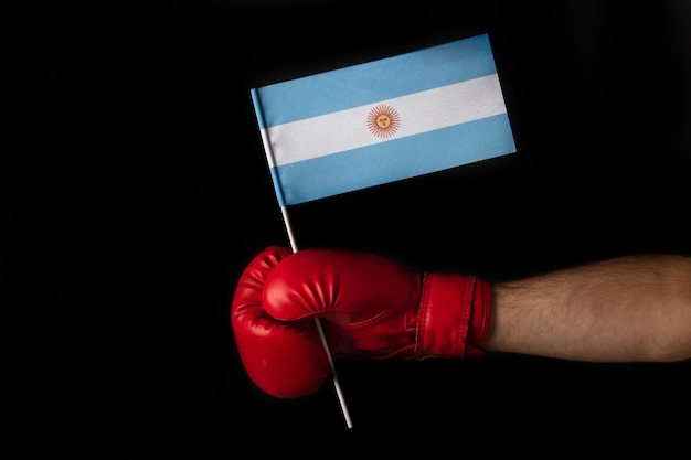 Boxer hand holds flag of argentina