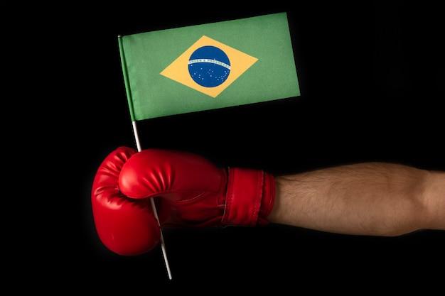 Boxer holds flag of brazil