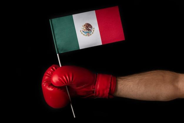 ボクサーはメキシコの旗を保持します