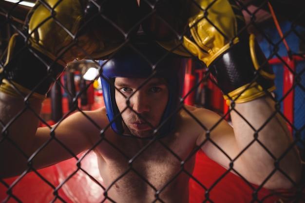 Боксер опирается на забор из проволочной сетки