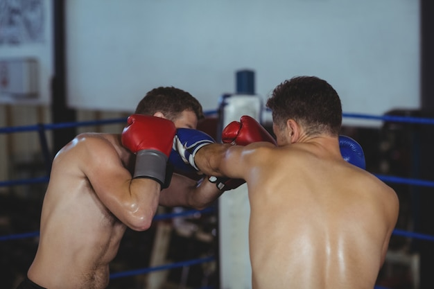 Boxers fighting in boxing ring