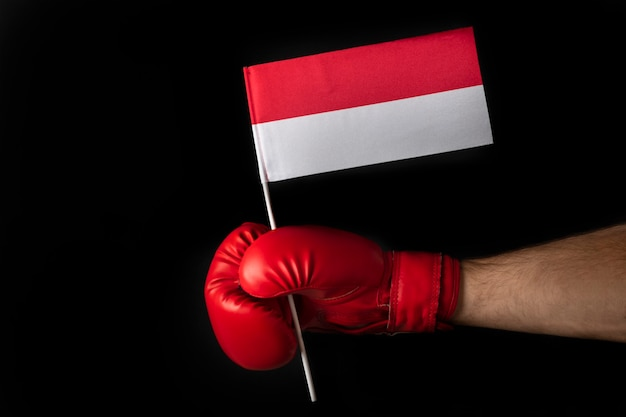 Boxers holds flag of poland