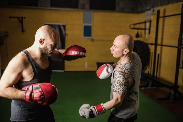 Boxers practicing boxing in the fitness studio