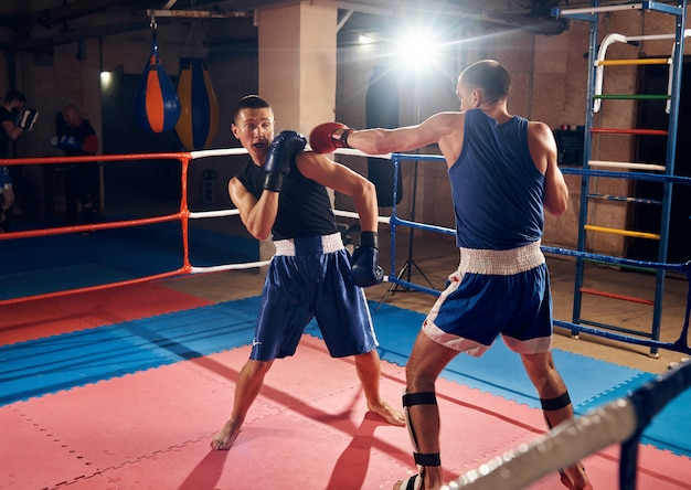Boxers training kickboxing in the ring at the health club