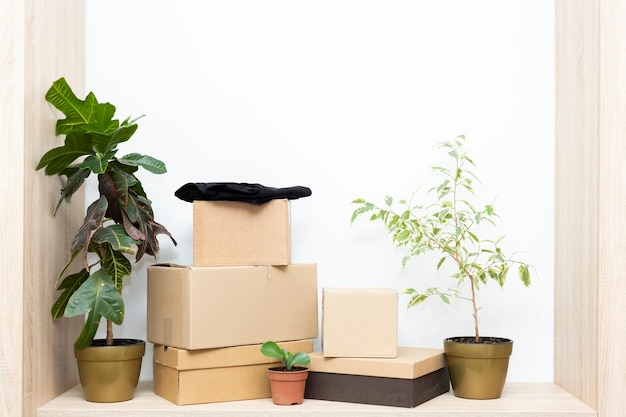 Boxes, flowers and a piece of furniture. concept of moving in a new space. copy space for text.