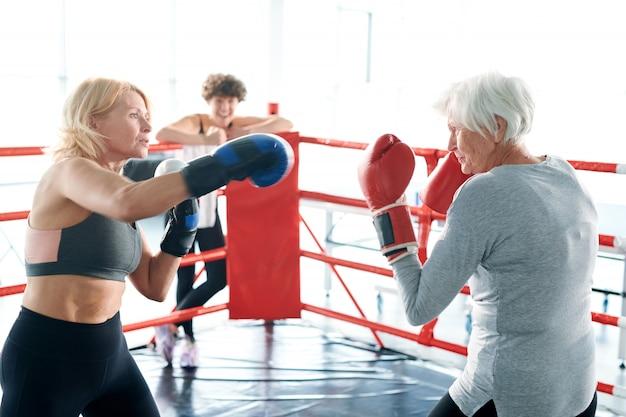권투 싸움