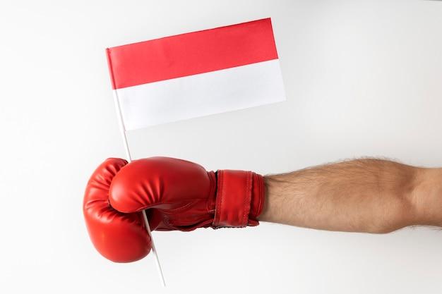 ポーランドの旗が付いているボクシンググローブ