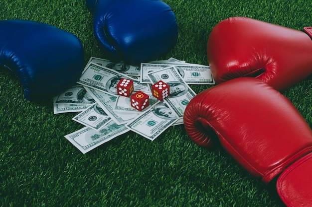 Boxing gloves and bill bet on grass green
