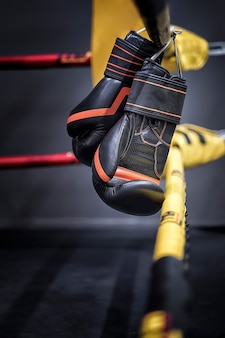 Boxing gloves hang on the rope