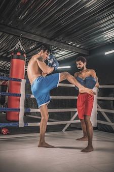 On a boxing ring. kickboxers fighting on a boxing ring and looking involved