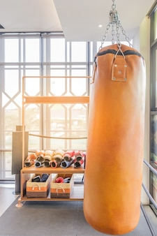 Boxing sand bags hanging at a sports gym.