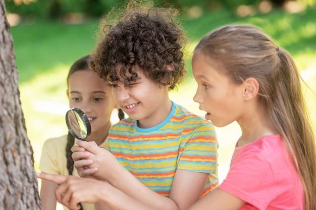 Мальчик и две девочки изучают ствол дерева