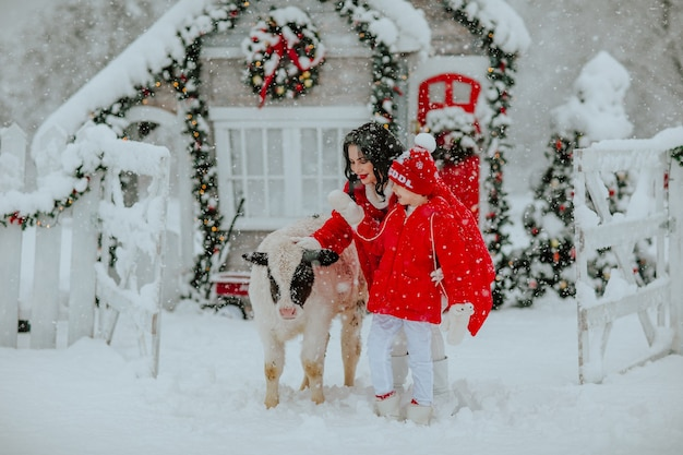 Мальчик и женщина позируют с маленьким быком на зимнем ранчо с рождественским декором. идет снег.