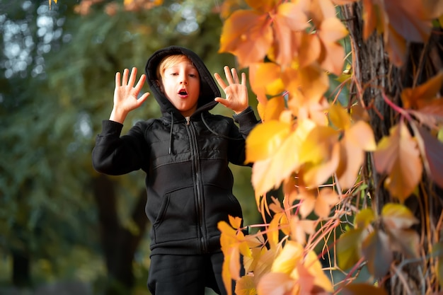 A boy in black clothes stands near a tree on which yellow autumn leaves hang