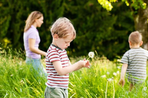 Boy blowing dandelion seeds