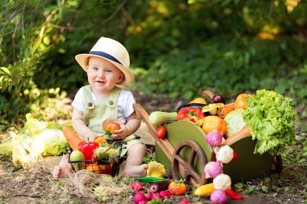 소년은 자연에서 야채 샐러드를 요리합니다. 정원사는 야채 작물을 수집합니다. 제품 배송