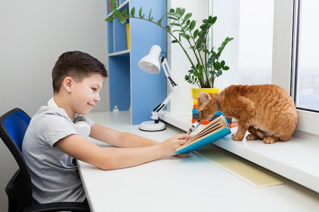 Boy at desk with cat reading