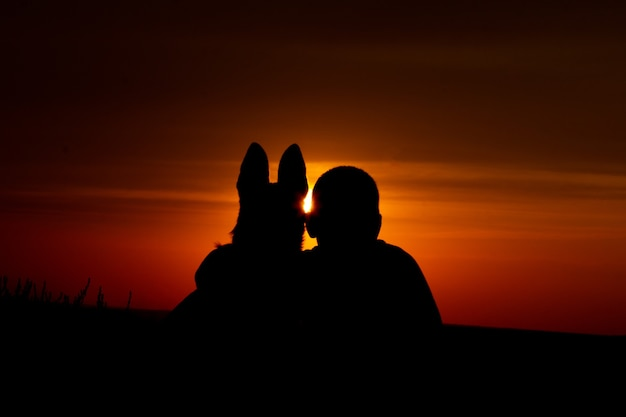The boy and dog malinois on the background of a beautiful sunset