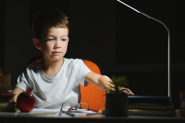 Мальчик делает домашнее задание дома вечером