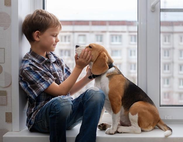 아파트의 창턱에 앉아 소년 유럽 모양과 비글 개