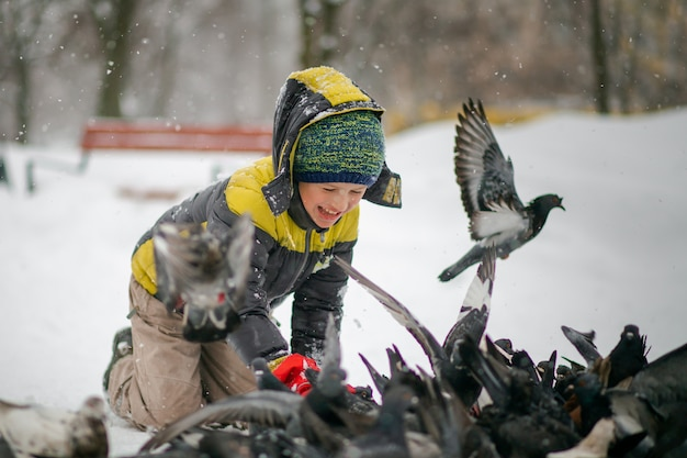 Boy feeds hungry birds in winter. rescue animals in cold. child protects nature. city pigeons in winter on snow.