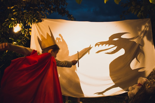 少年はドラゴンと戦う
