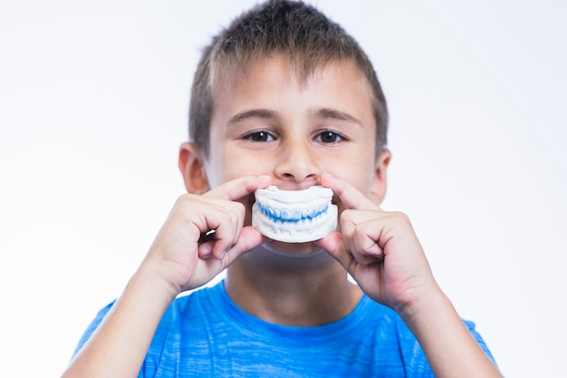 Boy holding teeth plaster mold on white background