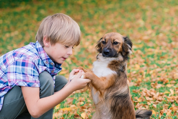 개를 껴안고 가을, 도시 공원에서 함께 plyaing 소년