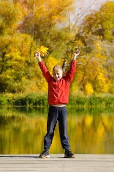 Мальчик в красной куртке, стоя на скамье подсудимых. листья в руке. осень, солнечно.