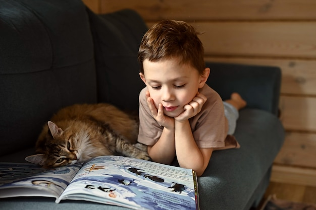 The boy is reading a book. a boy with a cat and a book lies on a blue sofa.