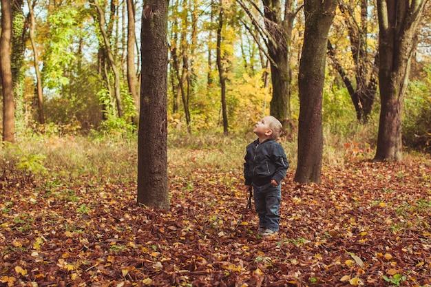 秋の森で騎士や戦士、原始人としてスティッチで遊ぶ少年。金髪の少年が木の近くに立つ