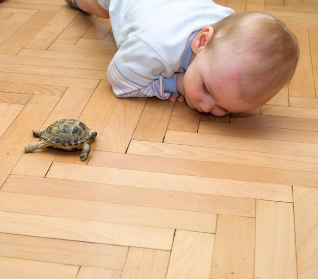 거북이와 노는 소년