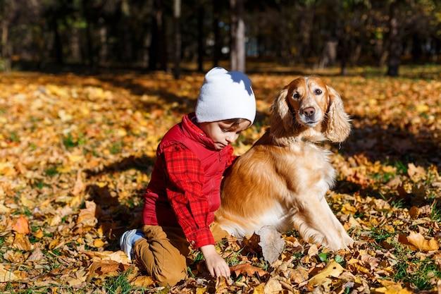 개와 노는 소년 가을 공원에서 즐거운 어린 아이 어린이와 애완 동물 사이의 우정