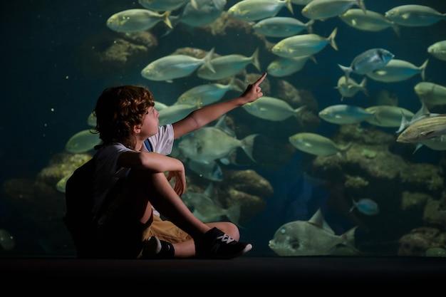 수중 수족관에서 물고기를 가리키는 소년