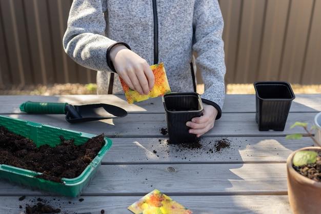 Мальчик кладет семена растений в горшок рассады на заднем дворе. детское воспитание природы.