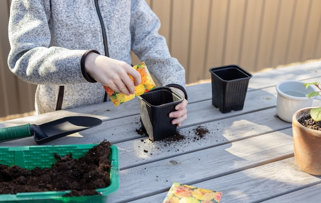 少年は、就学前の子供のための植物成長学習活動の裏庭のコンセプトの苗ポットに植物の種子を置きます
