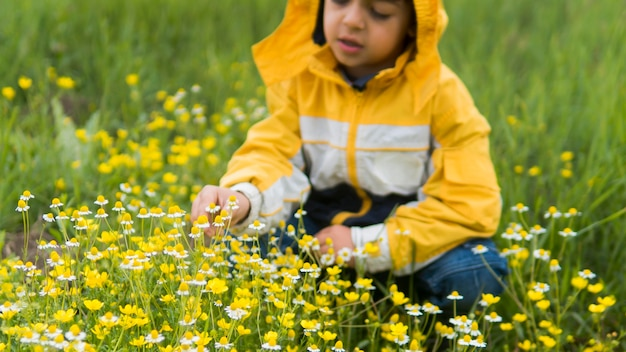 Boy in raincoat picking flowers front view