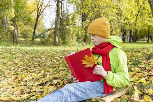 Мальчик читает красную книгу в парке, осенние школьные каникулы, школьник делает уроки на открытом воздухе, ребенок читает фею