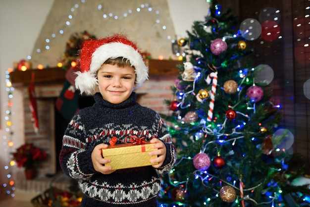 Boy in una sala decorata per natale con un regalo