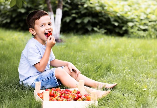 少年は牧草地に座ってイチゴを食べる