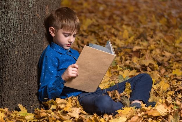 Мальчик сидит в лесу на опавших листьях и читает увлекательную книгу.