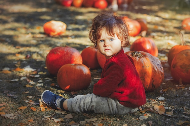 Boy sitting on lawn with a pumpkins