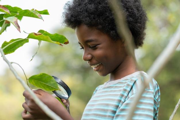 虫眼鏡を使って木の葉を探検し、見ている少年の笑顔