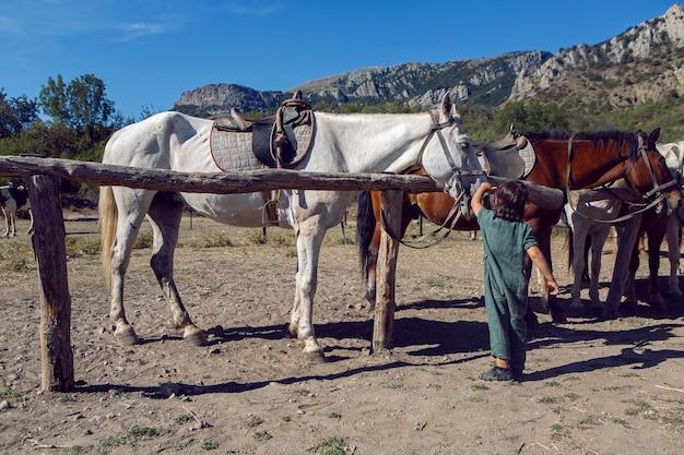 山の路上に立っている馬を少年が撫でる